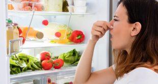 16 نصيحة لتحافظي على الطعام طازجًا