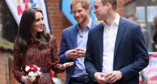 كيف تحقق وظيفة أحلامك؟ احصل الآن على فرصة عمل لدى العائلة الملكية البريطانية