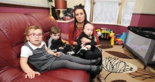 الفئران تغزو شقة أم لديها 3 أطفال والمجلس يمتنع عن مساعدتها