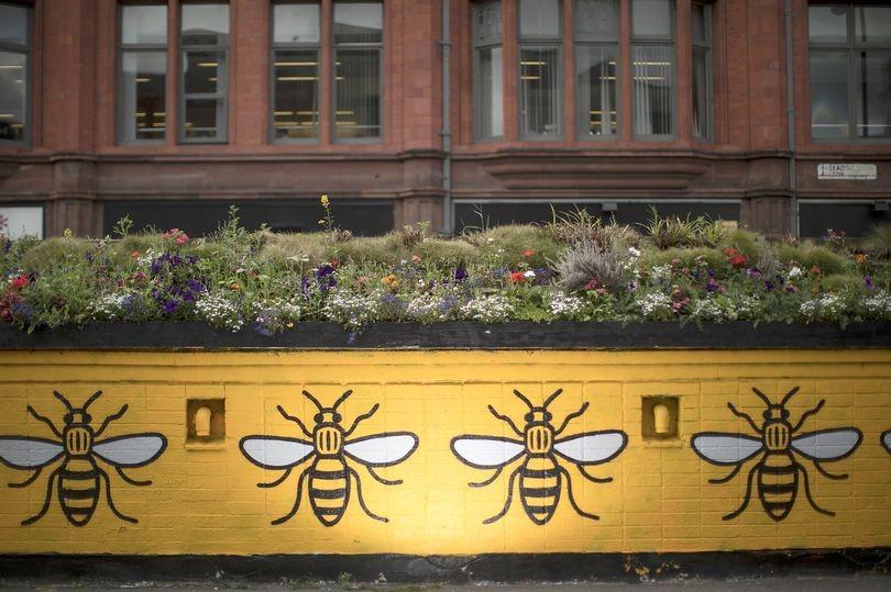 """تعرف على سبب اتخاذ """"النحلة"""" رمزًا لمانشستر!!"""