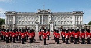الفئران تغزو قصر الملكة إليزابيث في لندن!!