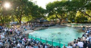 إغلاق حديقة حيوان لندن بسبب انتشار فيروس كورونا ومخاوف بشأن رعاية الحيوانات