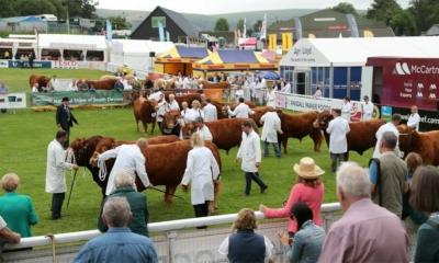 تأجيل المعرض الملكي الويلزي الزراعي حتى عام 2022!