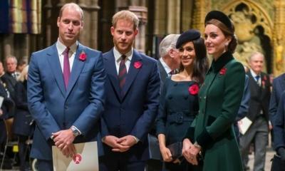 بعد مقابلته مع أوبرا ، هل سيتواجد الأمير هاري إلى جانب أخيه في كشف الستار عن تمثال الأميرة ديانا ؟