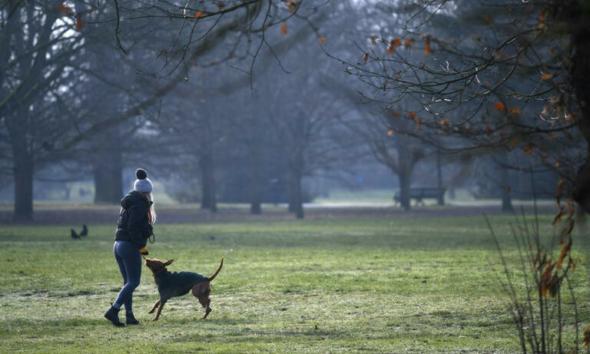 حملة في بريطانيا من أجل تغريم من يتجول بكلبه بطقس غير مناسب بـ30 ألف إسترليني