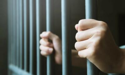 السجن لسيدة ألمانية فنانة في بريطانيا لـ 3 سنوات ونصف، تعرف على السبب