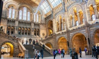 دليل أهم متاحف لندن التي ينصح بزيارتها